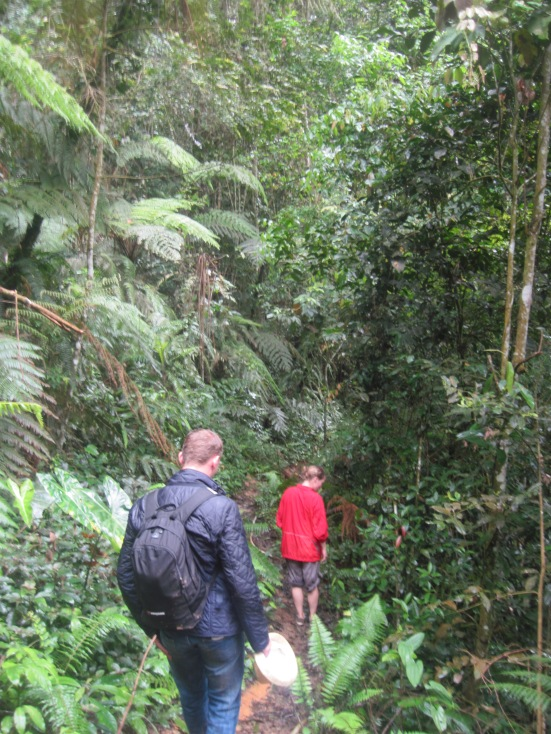 Our encounter with the London couple during trail 9 Jungle Trek in Cameron Highlands, Malaysia