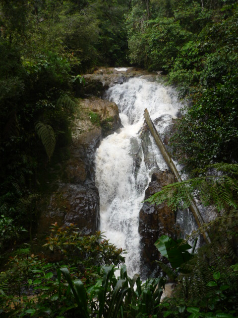 Robinson Falls in the Cameron Highlands, Malaysia