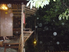 Nico's artsy photo of rain from our bungalow in Forest Resort, Tonsai, Thailand