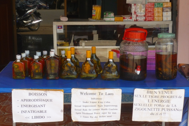 Tourists are welcomed to Laos with Cobra Whiskey - apparently an aphrodisiac!