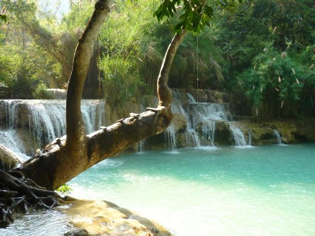 Beautiful and refreshing swim in Kuangsi Waterfalls just outside of Luang Prabang, Laos